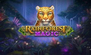 Rainforest_Magic